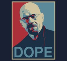 Breaking Bad - Hope for the future by Phneepers