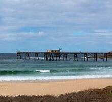Catherine Hill Bay Pier by Sharon Brown