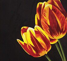 Tulips by Tanagra Studios