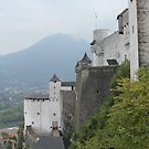 Salzburg - The castle by bubblehex08