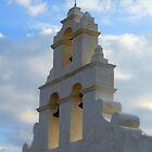 Mission San Juan by LeRoyM