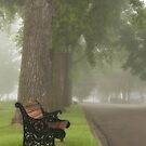A Moment of Stillnes by Sandra Parlow