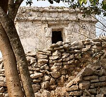 Tulum Wall Mexico by John Mitchell