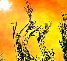 Sunday Sunrise by Brian Gaynor