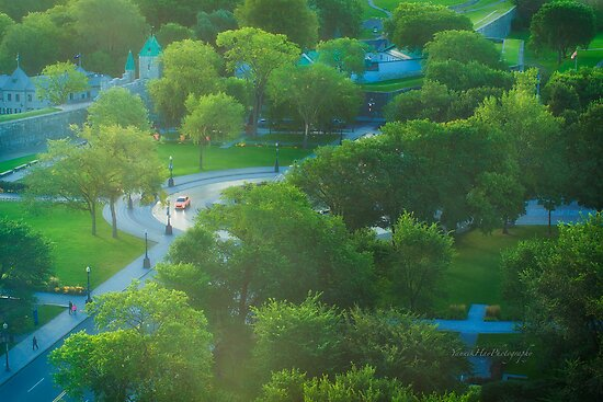 Parliament Hill and Fountain Tourny - Colline Parlementaire - Quebec by Yannik Hay