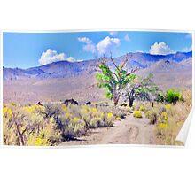 Hidden In Nevada Poster