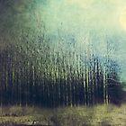 Silence by DejaReve