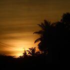 When the Sun Sets by Harsha Bhuyan