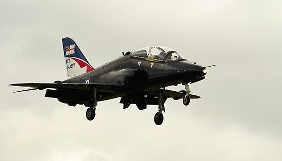 Fly Navy Hawk by Stephen Kane
