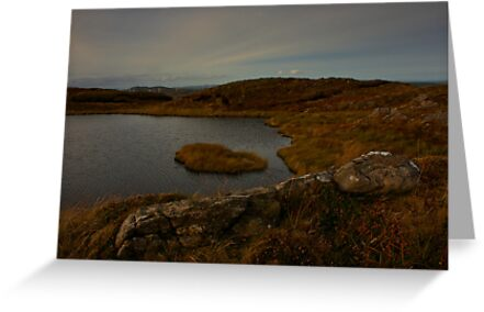 Mountain Lough by Adrian McGlynn