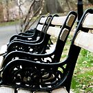 Benches by Hena Tayeb
