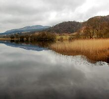 Winter Reflections on the Lake of Menteith by Christine Smith