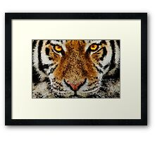 Animal Art - Tiger Framed Print