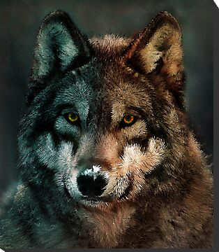 Animal Art - Wolf by Maximilian San