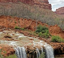 Lower Navajo Falls of Havasu Creek  by Robert Meyers-Lussier