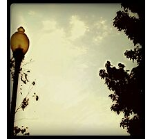 Under The Lamp Post Photographic Print