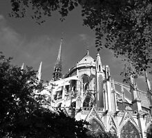 Notre Dame 2, Paris by Alex Cassels