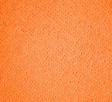 Orange Micro Fiber Cloth by CaseBase