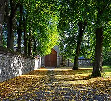 First signs of Autumn in Belgium - Sept 15, 2013 by 242Digital