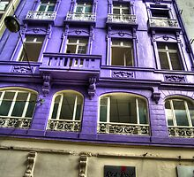 The color Purple by Nazm  Photography