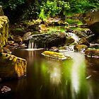 Gothland Stream by Tony Shaw