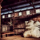 Woolshed Calendar 10 by Candice84