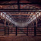 CJO Photography - Woolsheds  of 2013 by Candice84