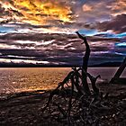Yellowstone lake sunrise by Terrell Bird