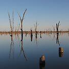 Lake Mulwala by dozzam