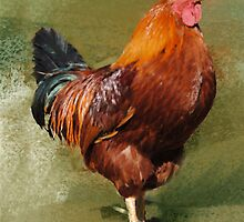 Oil Painted Chicken Greeting Note Card by Moonlake