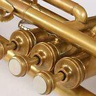 Vintage Brass Trumpet Valves and Tubes by rhamm
