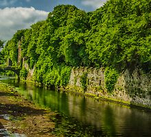 Castle Glenarm by Adam Northam