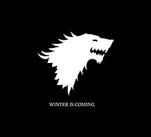 Game of thrones Winter by wes151