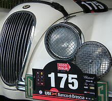 Jaguar XK120 Mille Miglia by David Cross