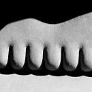 Toes by David Schroeder