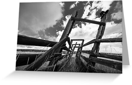 Cattle Squeeze Chute B&W by Jim Stiles