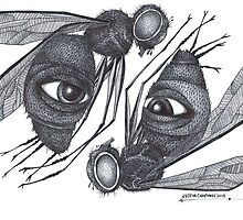 Psychic Fly's by Justin Chapman