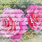 Rumi Quote - Roses - Guide From Beyond by Barbara Griffin