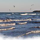 Sea Breeze by Heather Thorsen