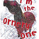 I'm the Ornery One- Pony by Ginny Luttrell