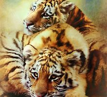 Petit Tigres by Trudi's Images