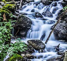 Cadair Idris Waterfall by Paul Madden