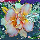 Day lily splendor by ♥⊱ B. Randi Bailey