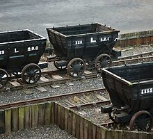 Old Railway Storage Cars by printscapes