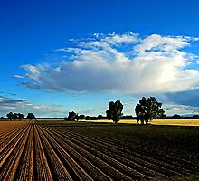 Wide Open Plains Farmland by Oldetimemercan