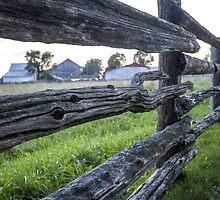 A Cedar Rail Fence by Mikell Herrick