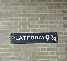 Platform 9 and 3/4 by thestoreofSam