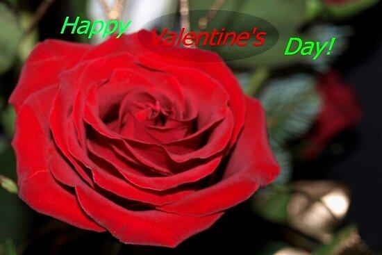 Rose valentine by ♥⊱ B. Randi Bailey