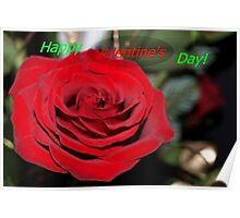 Rose valentine Poster