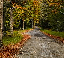 Summitville Mountain Road Autumn by PineSinger